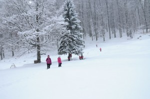 Iarna la Sarmizegetusa Regia