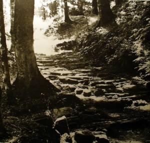 Drumul pavat (fotografie de arhiva)